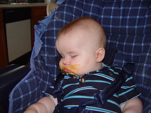 Zack (7 Months Old)